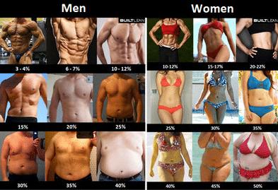 körperfettanteil männer