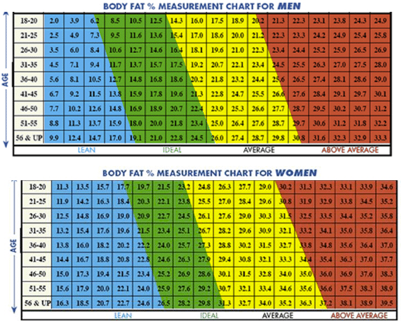 body fat percentage female age